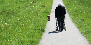 Femme âgée qui promène son chien en se déplaçant avec un déambulateur